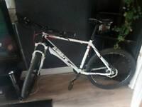 Bike calibre 22