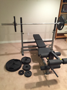 BENCH PRESS + WEIGHTS + DUMBBELL WEIGHTS W/ STAND