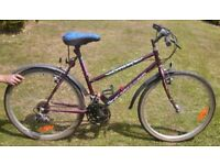 Townsend Horizon Ladies Bike