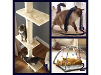 Cat Tree, Play Mat, Groom and Massager