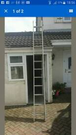 Set of ladders