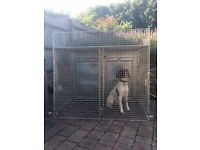 Guardsman Double Dog Travel cages x 3. High quality - will separate