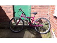 """16"""" womens bicycle including free accessories"""