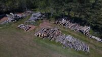 Logs and split fire wood for sale