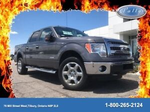 2013 Ford F-150 XLT, One Owner, Local Trade!!