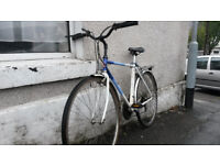 Top City Bike for Sale: Raleigh Pioneer Classic