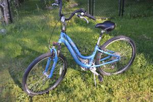 3.0 Navigator Trek Bike