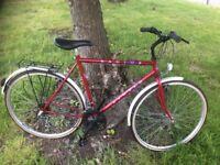 Mens Apollo bike
