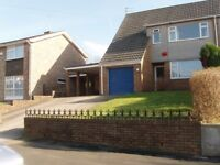 One Double Bedroom in Shared Modern Semi-detached House