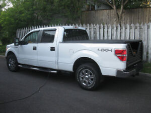 Ford F-150 2009 CHANCE UNIQUE