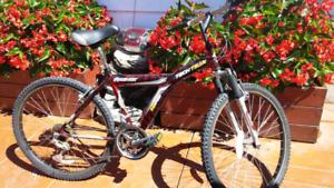 """Equinox Unisex bike 26"""""""