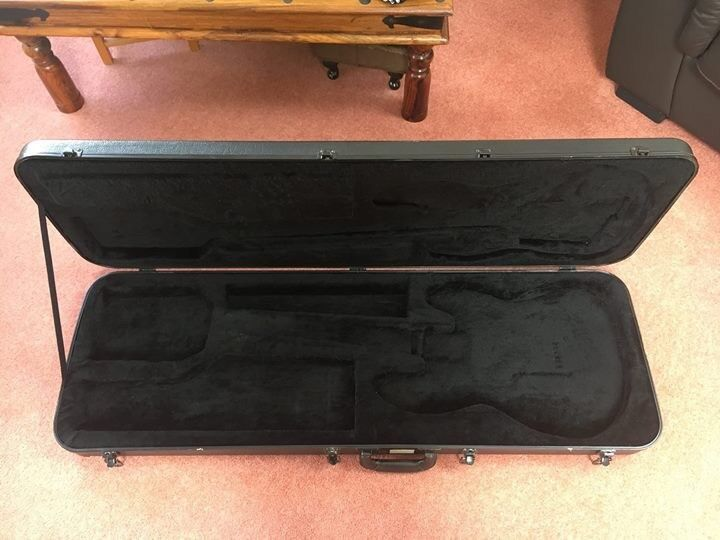 Gator Bass case