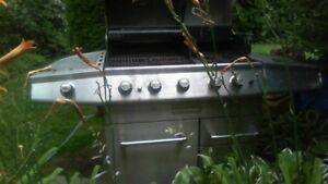 Stainless Natural Gas BBQ