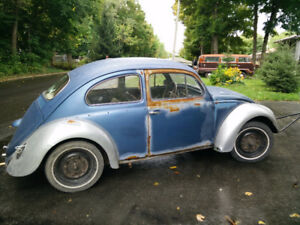 Wanted Beetle or Bus for with son project