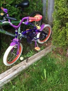 Kids Bike in great Shape- Only $20