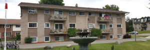 Large, bright 2-bedroom basement unit 950.00 + hydro October 1st