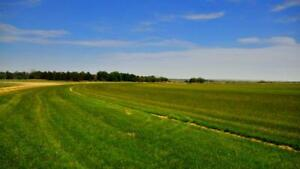 Beautiful Land For Sale in Caledon