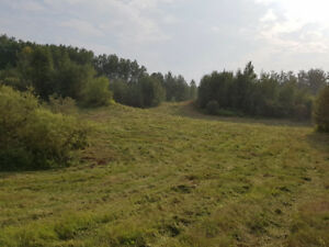 70 acres Forest and Field SW of Stony Plain