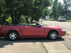 2000 Ford Mustang Convertible