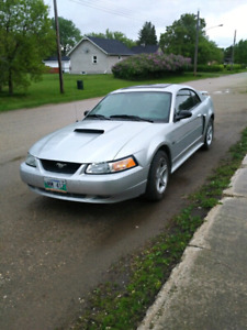 2003 mustang GT FRESH SAFETY