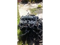Ford transit 2.0 diesel engine