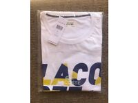 Men's Lacoste T-shirt - Genuine