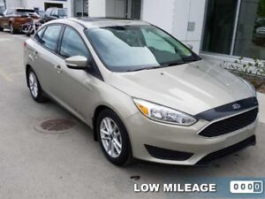 2015 Ford Focus SE  - Bluetooth -  SYNC - $123.14 B/W - Low Mile