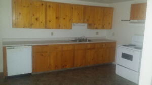 Room For rent in a two bedroom apartment