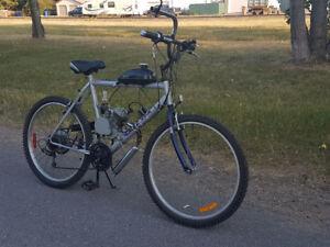 Men's Motorized Mountain Bike