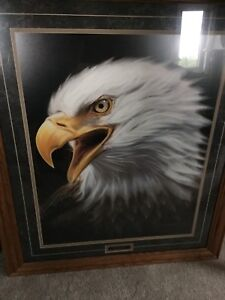Detailed Framed Eagle Picture