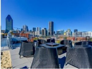Modern Condo Downtown/Furnished
