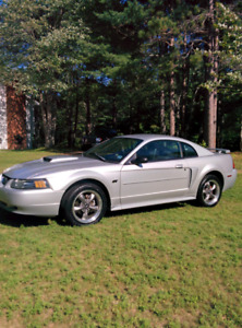 2001 Mustang GT. New safety inspection.