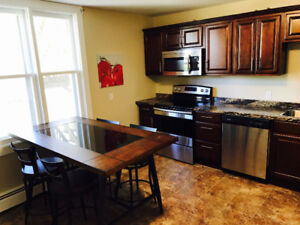 EXECUTIVE 2 BDRM APT FURNISHED DOWNTOWN RENT WEEKLY/MONTHLY NOW