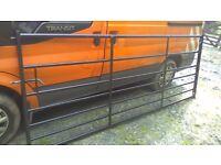 10 Foot galvanized gate