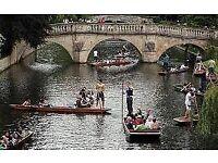 PUNTING IN CAMBRIDGE THIS SATURDAY
