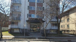 1bd w/ private balcony in Lachine - Available Immediately