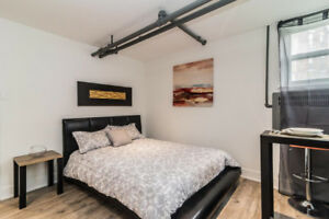 Fully renovated trendy loft in the heart of Little Italy