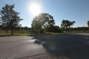 10 Acres Horse Farm for Sale