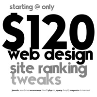 EXPERT WEB DESIGN  >>  by UNIVERSITY STUDENT >> FROM JUST $120