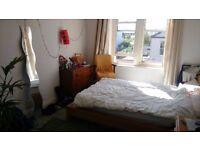 Bright, spacious double room in a flatshare near Westbury Park