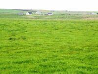 LAND FOR SALE, auckengill highlands, building plot