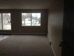 Lovely Two Bedroom Apartment
