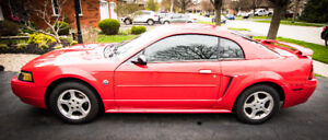 2004 FORD MUSTANG 40TH ANNIVERSARY UPGRADED