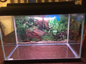 18 gallon aquarium with light and filtration pump