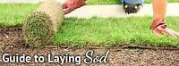 Landscaping / demo jobs delivery & install sod, crush rock
