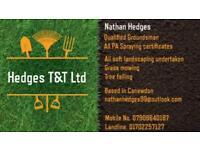 Hedges T&T Ltd Garden maintenance / tree surgeon
