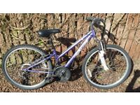 Girls Bike Apollo C24