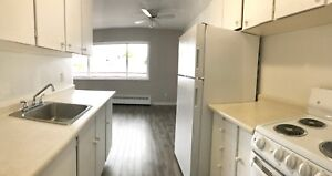 Bright and Spacious- 2 Bedroom Apartment Available