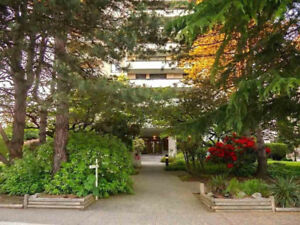 Burnaby-Highgate 2 Bed/ 2 Bath Condo For Rent