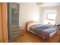 One Double Bed Room To Let Short Term until 25th Aug